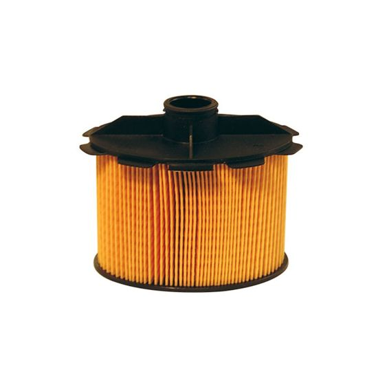FILTRON filtr paliwa PE816/2 - Citroen Peugeot 206,306, Expert, Partner owalny